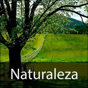 Serie Naturaleza