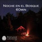 1FF56_Noche_en_el_Bosque_60min