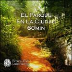1FF5B-El-Parque-en-la-Ciudad-60min