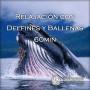 1FF5E-Relajacion-con-delfines-y-ballenas-60min