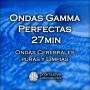 1FF61-Ondas-Gamma-Perfectas-27min